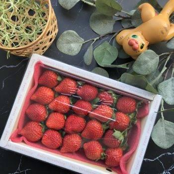 大湖草莓20顆裝